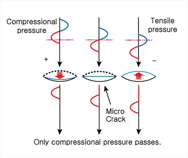 Schematic diagram showing the concept of CAN at micro crack.jpg